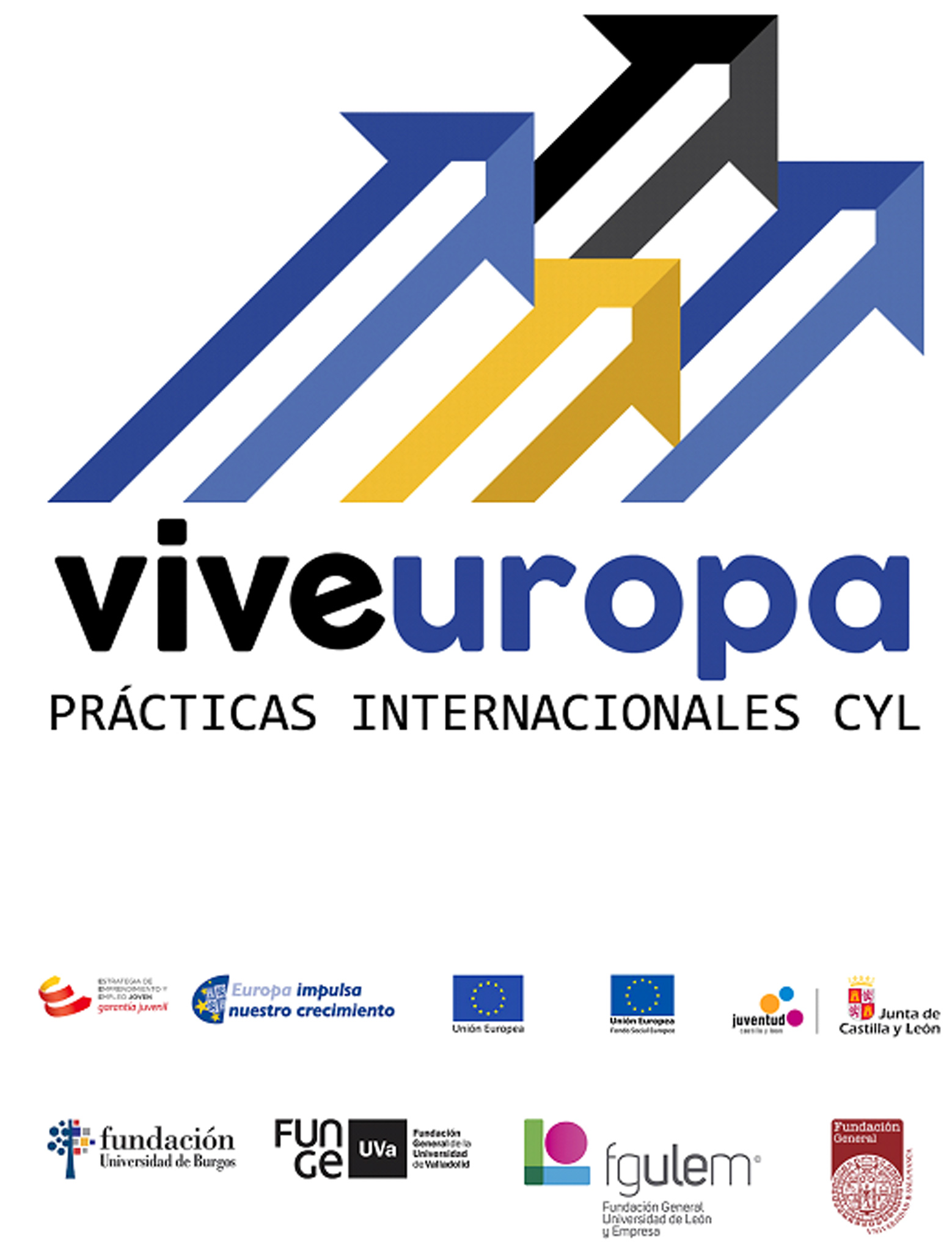 Viveuropa